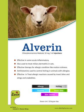 ALVERIN - 100 ML - Zovix Pharmaceuticals