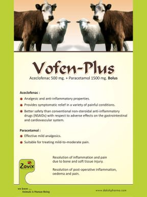 VOFEN-PLUS - Zovix Pharmaceuticals