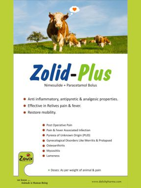ZOLID-PLUS - Zovix Pharmaceuticals