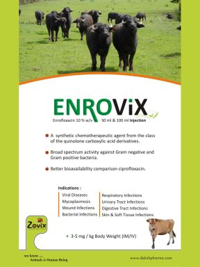 ENORVIX(TM) - Zovix Pharmaceuticals